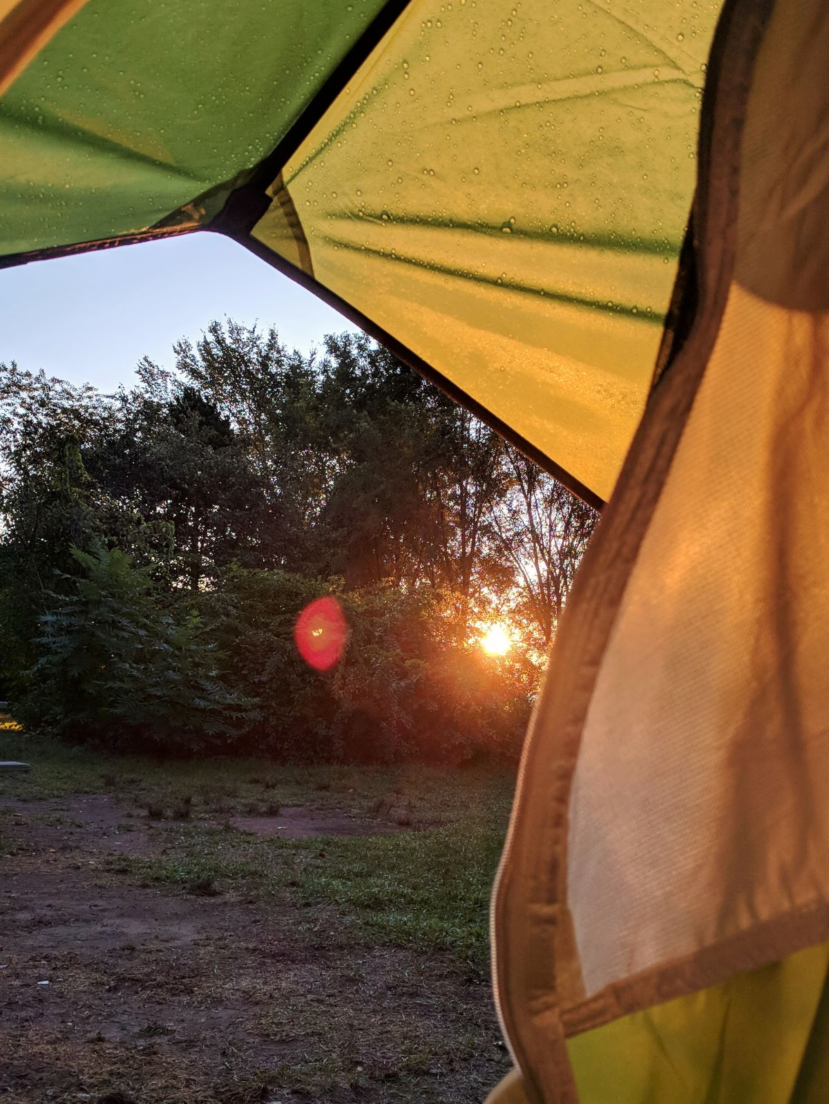 a peek of the sunrise from a green tent door