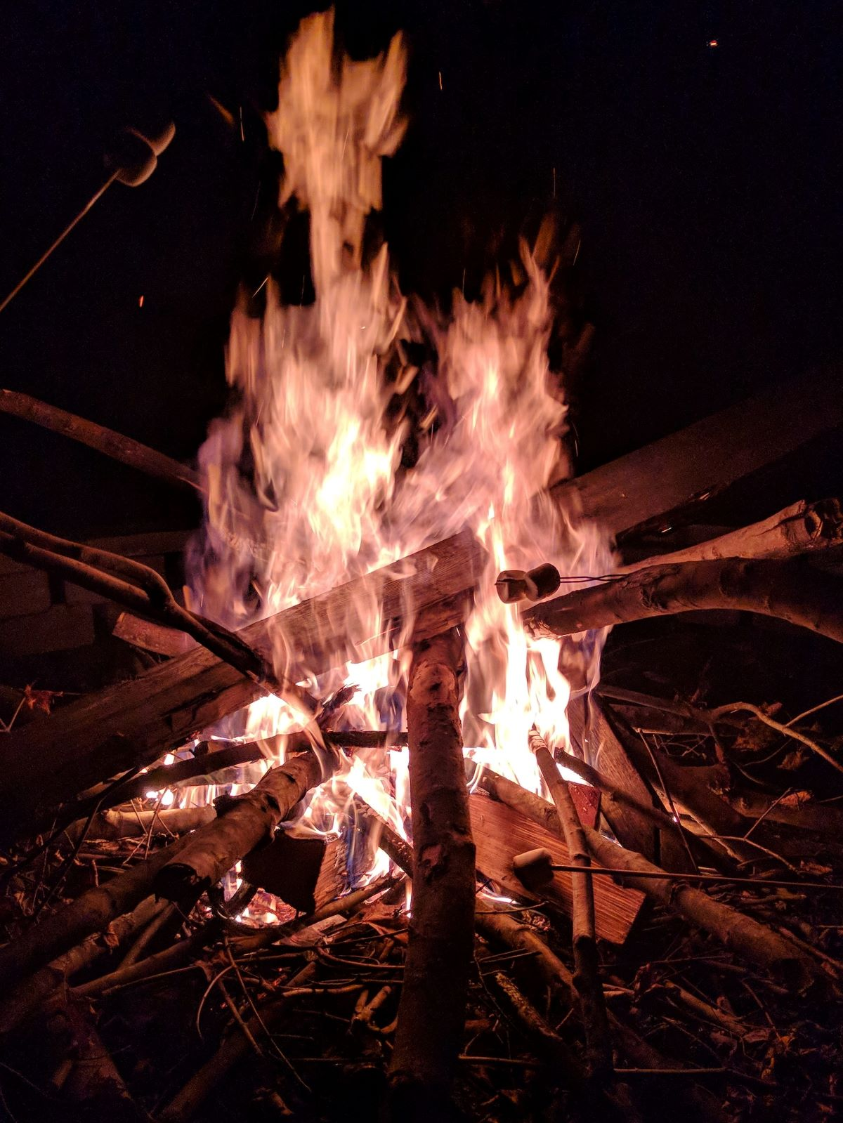 Bonfire at night with people making s'mores