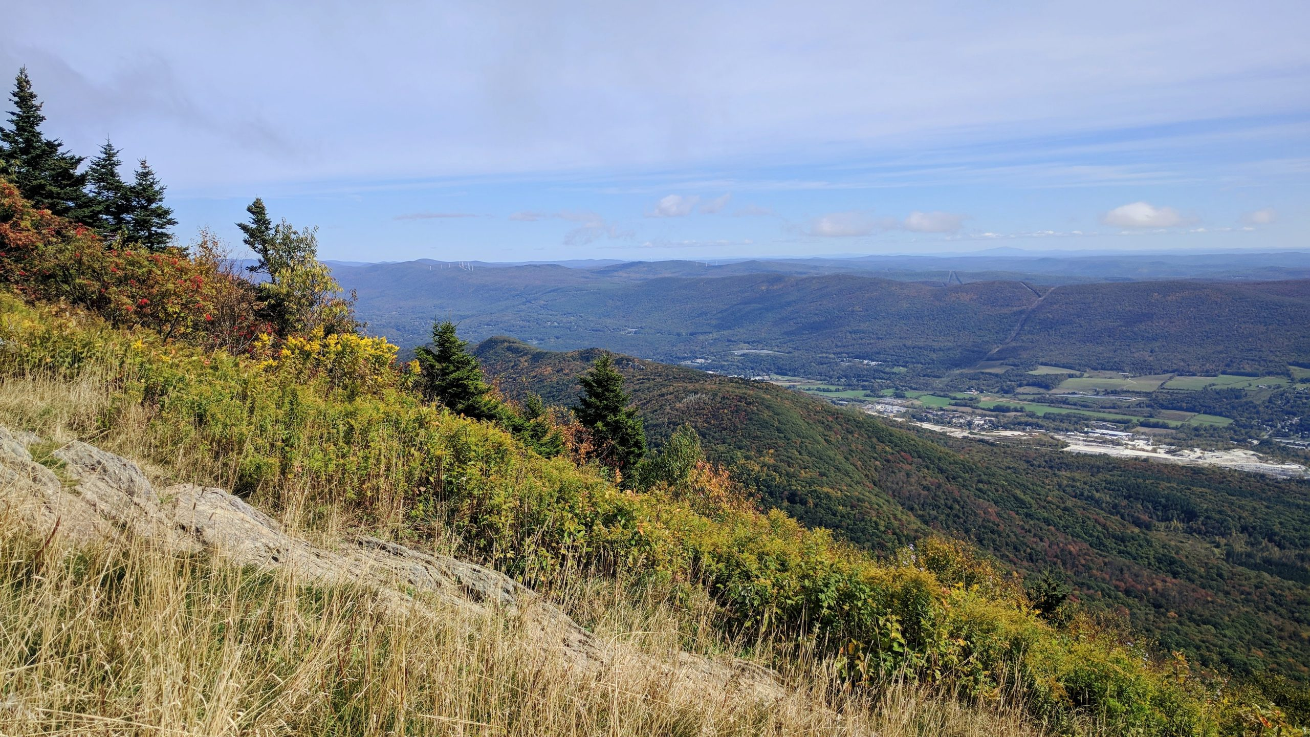 view from Mt Greylock in the early fall - blue skies with wispy clouds, yellow tall grass, trees, and forests