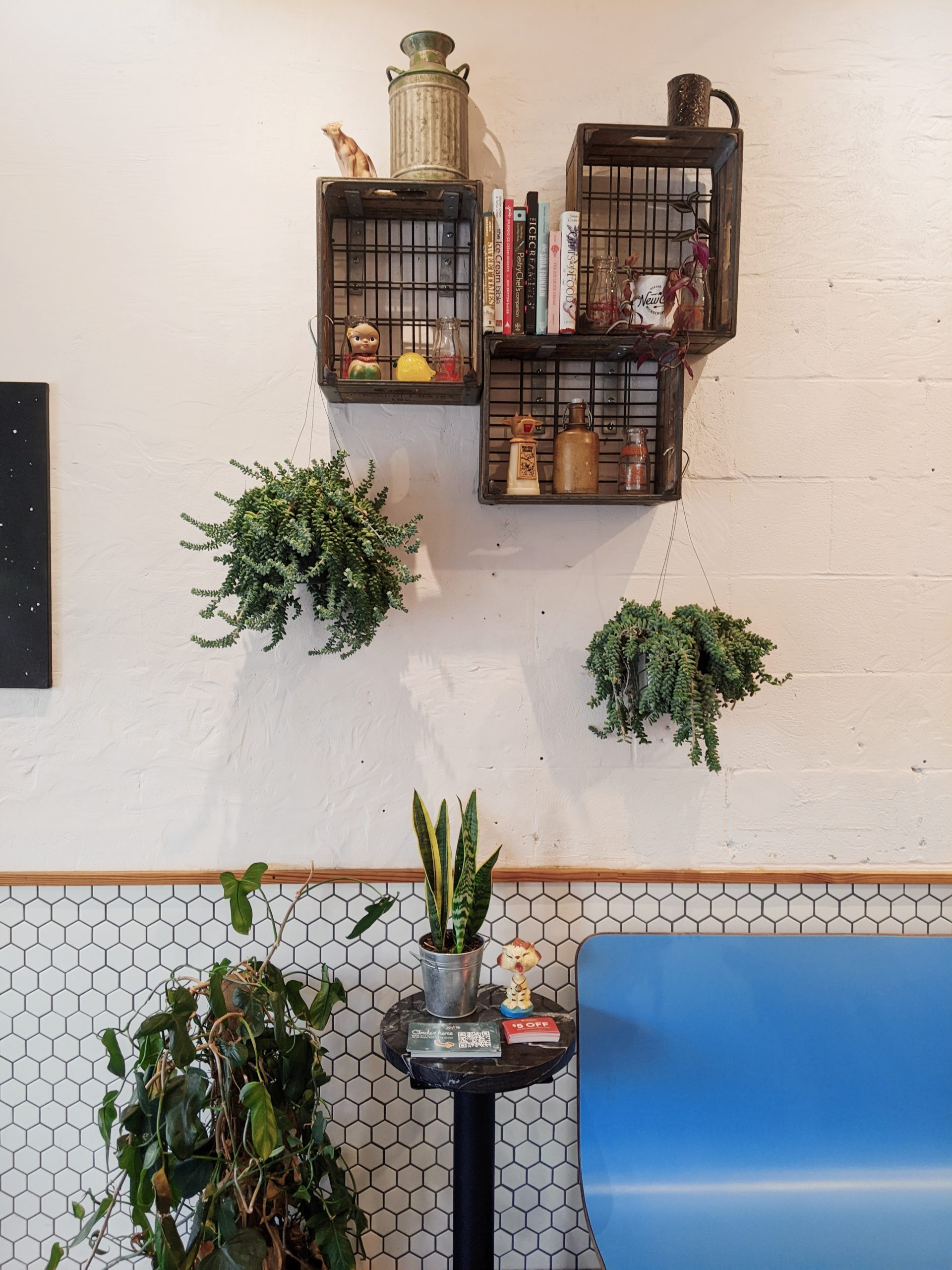 bookshelves with hangingplants and a hexagon tile wall at New City Microcreamery