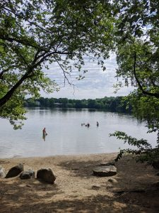 Levingston Cove at Crystal Lake with a sandy beach and trees